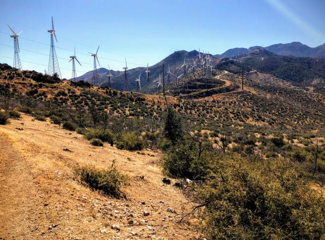 windmillhills.jpg
